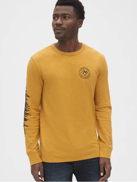 Graphic Long Sleeve Crewneck T-Shirt